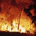 21st century fire fighting