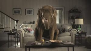 elephantoldman